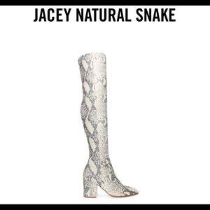 Steve Madden Jacey Snake Boot